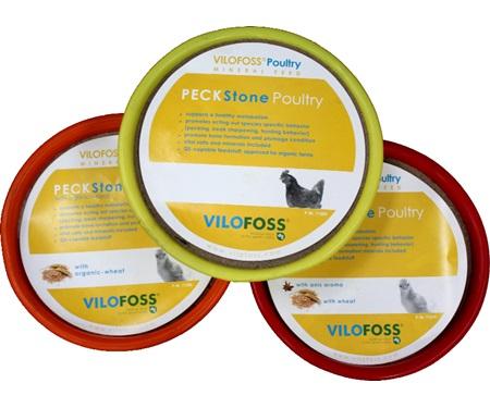 πέτρες απασχόλησης για πτηνά PECKSTONE MEDIUM